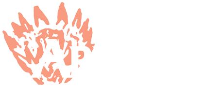 arnelia-logo-white